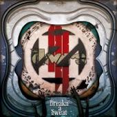 Breakn' a Sweat (Zedd Remix) - Single