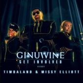 Get Involved (feat. Timbaland & Missy Elliott) - EP