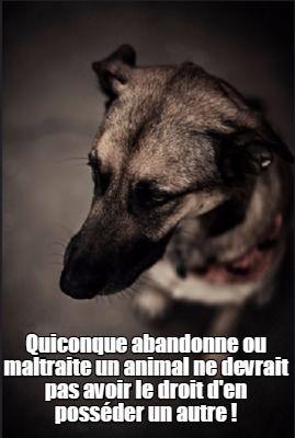 """Vingt Dieux"" !!!  - Page 5 B_1_q_0_p_0.jpg?u=https%3A%2F%2Fi.pinimg.com%2F736x%2Fa3%2Fd5%2Fec%2Fa3d5ec797787a472718793c1fd7b88e7--loved-ones-protection-animale"