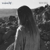 New Soul - Single
