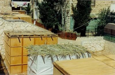 SOUCCOTH, la fête des Tentes - L'Aventure Tel Aviv