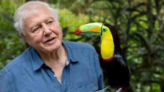 BBC announce new Sir David Attenborough nature documentary ...
