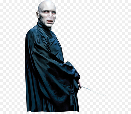 Lord Voldemort Harry Potter and the Philosophers Stone ...