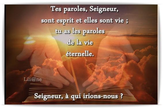 Tu as les paroles de la vie éternelle » (Jn 6, 60-69)