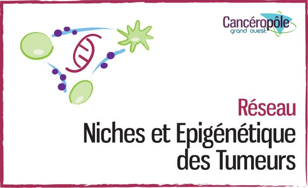 Niches et Epigénétique des Cancers - Cancéropôle du Grand ...