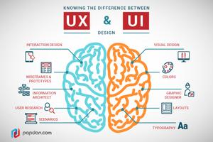 UI vs UX Design | UZU Media