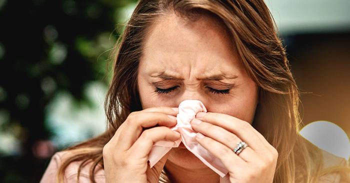 On the epidemiology of influenza
